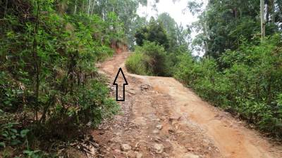 Now it is a gravel road and climb up shown by the arrow. There were few houses on our way. We clarified the pathway