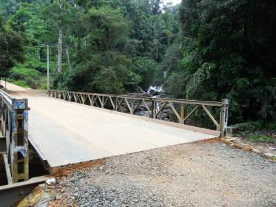 Recently built bridge and Brahmana Ella is beyond those trees