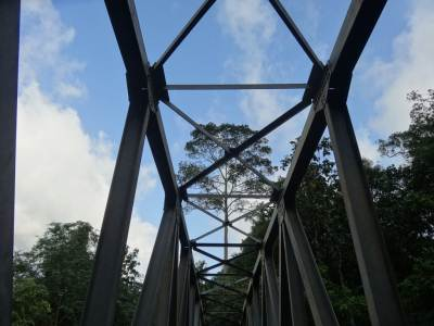Skeleton of the bridge