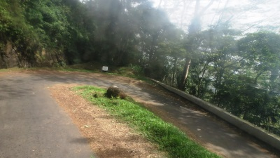 Passing Buluthota ten hair pin bends
