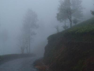 Misty Return to Bandarawela
