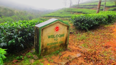 Entering to Morning side tea estate