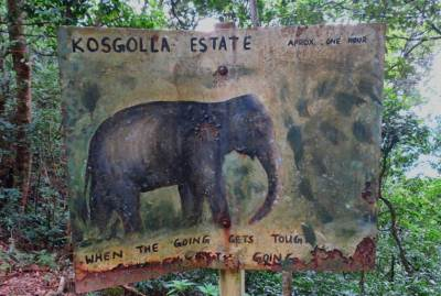 Directions to Kosgolla Estate