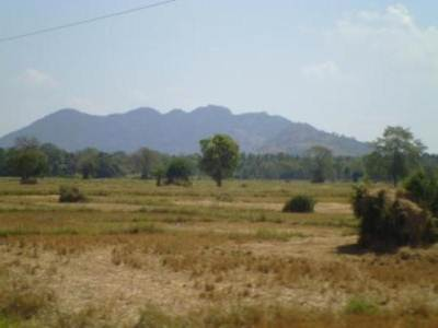Paddy fields and mountains