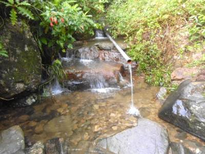 Water stream behind the bungalow
