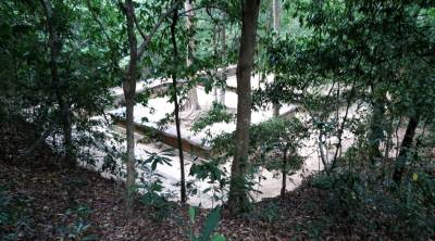 Seetha Kotuwa archeology site through trees