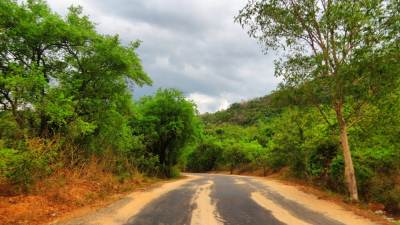 The road through VRR sanctuary