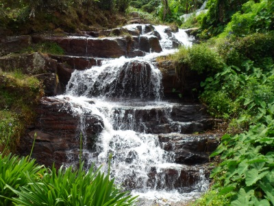 Cascade along the road…..