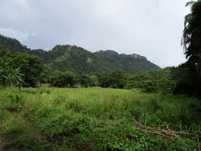 Towards Kuragala Mountains