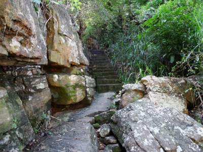 Steps that go to the village but can also use to reach the top one