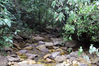 Base of Adam's peak – main/longest feeder stream of Baththalu oya