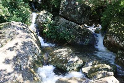 Water from Bambarakanda waterfall
