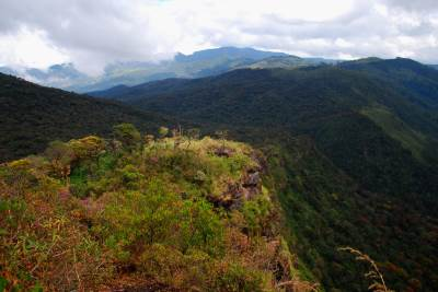 The forest range which spreads towards Nuwaraeliya