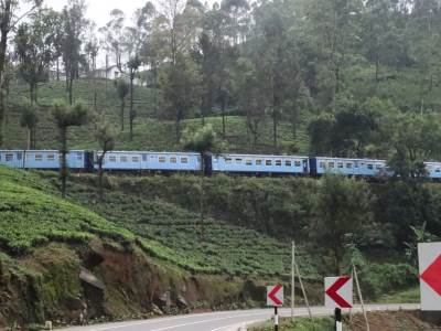 Resumed train services up to Nanu Oya
