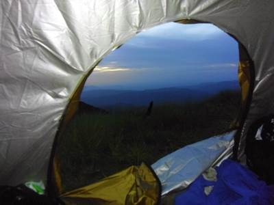 View from inside tent