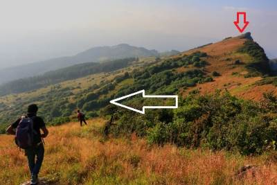 White arrow shows the forest patch we couldn't cross. Red arrow shows Katusukonda