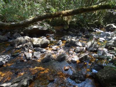 The stream just before the Kuru Ganga