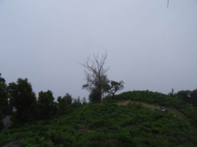 Towards Samanalawewa, everything is blocked by the mist that could be hacked with a chain saw