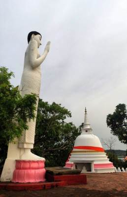 statue with the asanagaraya