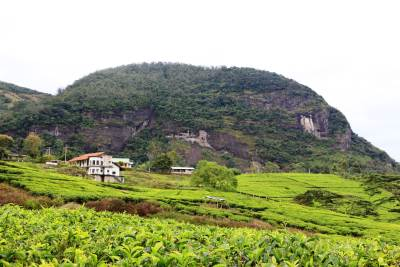 """Kandasamy Gala"" කන්දසාමි ගල-Sacred rock situated closer to Knuckles"