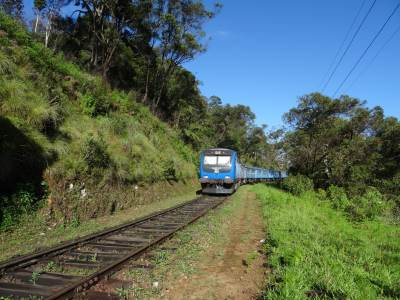 Hasi's first encounter with a train on a rail hike