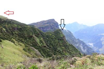 View at opening area: First peak is shown by black arrow and second peak is shown by red arrow