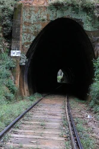 Tunnel No:25
