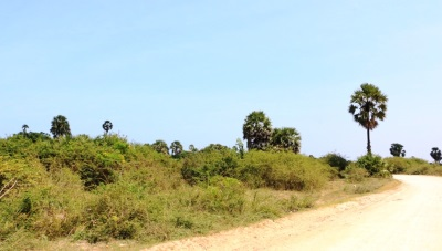 Road from Iyakachchi to Chundikulam