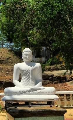 statue placed on the asanagaraya