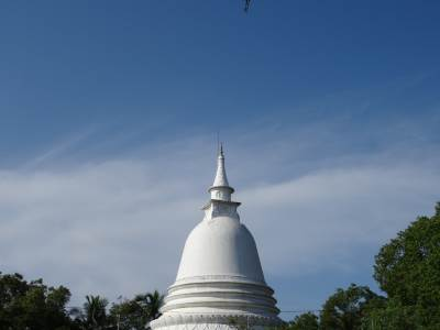 On the dawn of Vesak