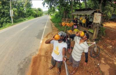 Day 1: on A1 Kandy road. More king coconuts to reload all the lost minerals.