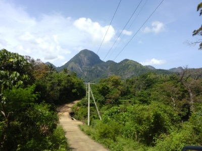 Roads of Puwakpitiya Village and Kawdagammana Mountain