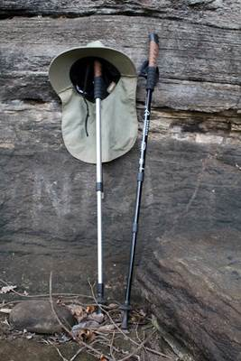These hiking poles helped a lot