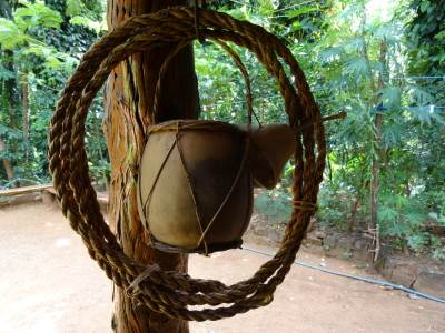 Things made from the resources of jungle