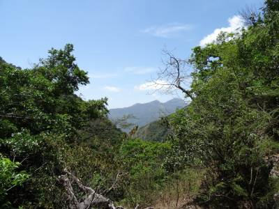 Distant mountains towards Gala Mudunua