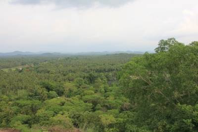 View from Mukunuwenna pokuna