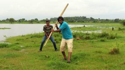 playing cricket with the paddle