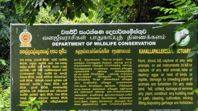 entering Kahallapallekele sanctuary
