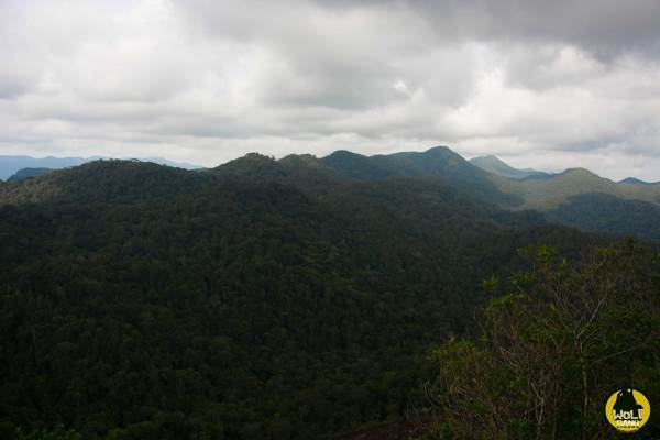 View from the Sinhagala Peak
