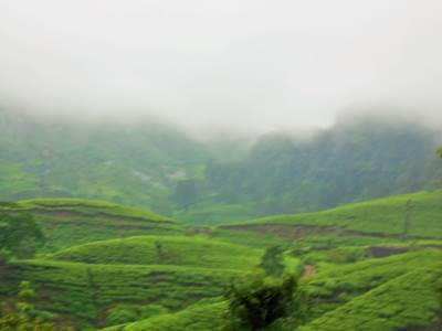 Am I in Nuwara-Eliya….