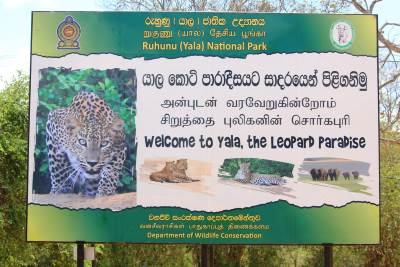 Wrong Sinhala term for leopard