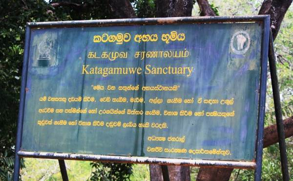 Passing Katagamuwa sanctuary