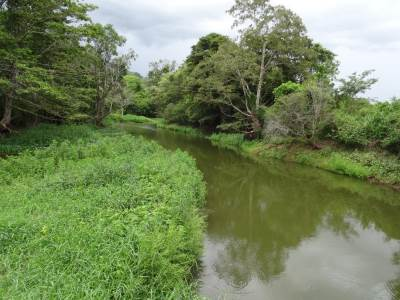 The canals leading to Buduruwagala